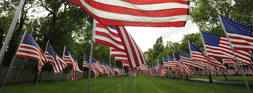 Multiple American flags lined up along a grassy lawn.